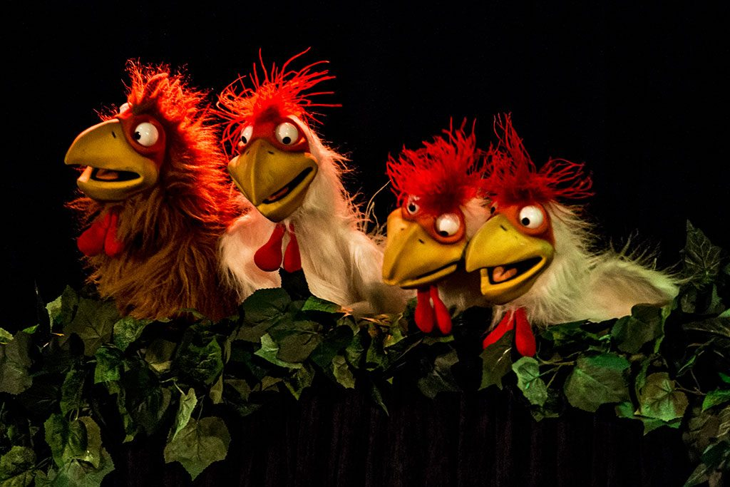 les poules de la forêt